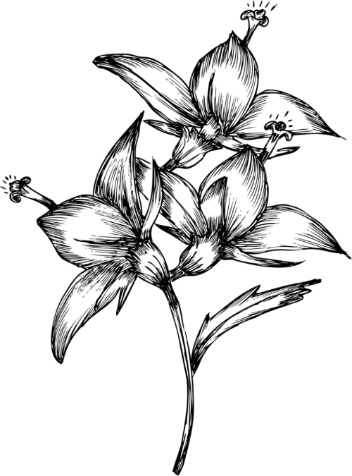 diseños exclusivos airam beige